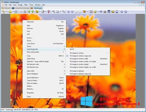 Снимак заслона XnView Windows 8