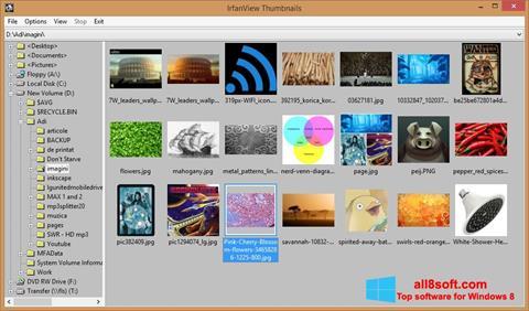 Снимак заслона IrfanView Windows 8