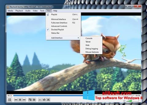 Снимак заслона VLC Media Player Windows 8